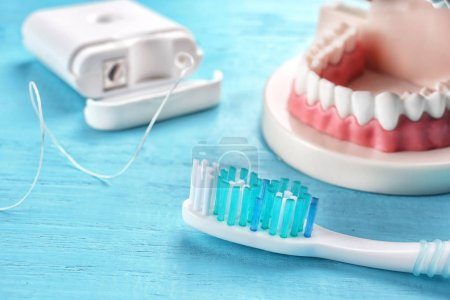 Toothbrush, dental floss and plastic jaw