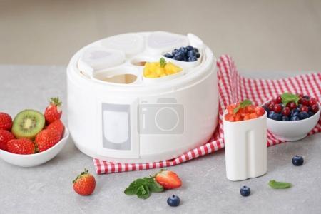 yogurt maker and ingredients