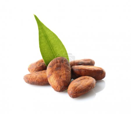 Aromatic cocoa beans on white background...