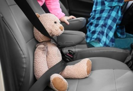 Fastened teddy bear on car seat