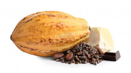 Cocoa pod and products on white background...