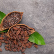 Halves of cocoa pod with beans and nibs on grey ba...