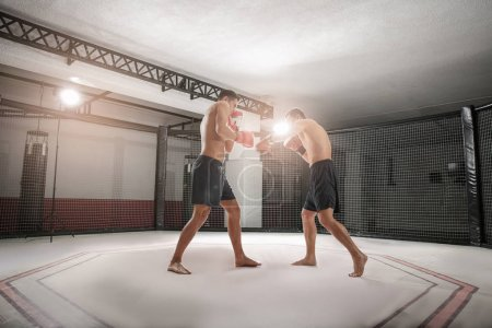 Two strong boxers fighting in gym
