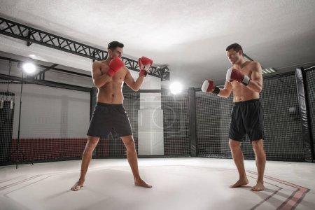 Photo pour Deux boxeurs forts se battant dans la salle de gym - image libre de droit