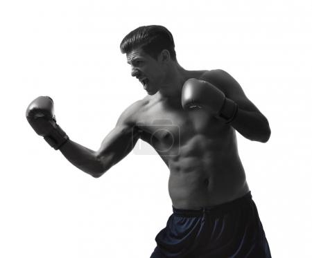 Young man with boxing gloves on white background