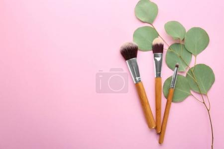Different brushes of professional makeup artist and twig on color background