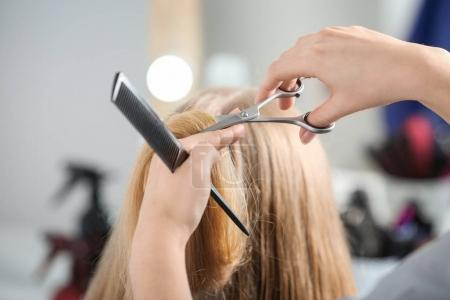 Professional hairdresser cutting client's hair in beauty salon