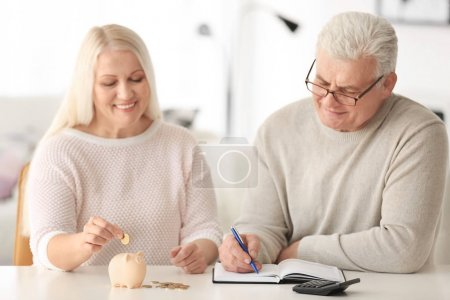Mature couple thinking over pension plan at home