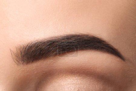Beautiful female eyebrow after correction, closeup