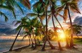 Anse Champagne beach