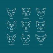 Cat breeds line icon set.