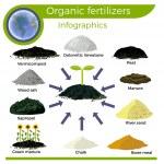 Vector organic fertilizers. Infographics