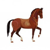 Horse with a raised front foot