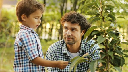 Closeup. Portrait of a little boy and his dad planting a tree. The boy tells something to his dad, the dad replies. The boy touches the leaves. Blurred background