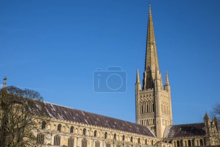 Norwich Cathedral in the historic city of Norwich