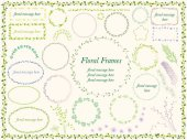 A set of vector illustration frames of various flowers and plants
