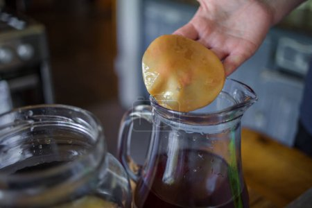 Step by Step how to make Kombucha tea