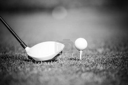 golf driver and a golf ball