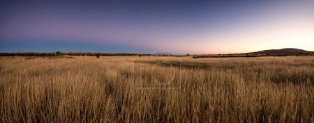 views of the scenic Kalahari region