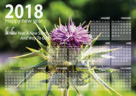 calendar 2018 happy new year with beautiful thistle flower background