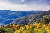 Scenic landscape in autumn on top of mountain with colorful tree