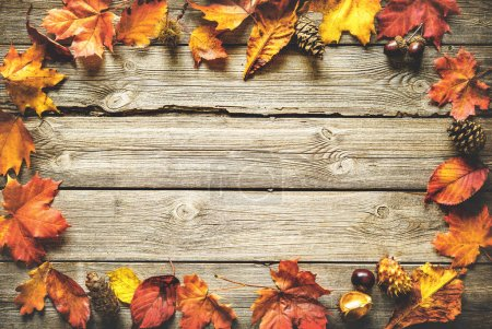 Photo for Vintage autumn border from fallen leaves and fruits on the old wooden table. Thanksgiving autumnal background - Royalty Free Image