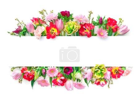 Photo pour Fleurs printanières colorées isolées sur blanc. Vue supérieure avec espace de copie - image libre de droit