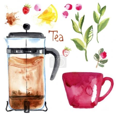 Set cup of tea and berries, a drink made from herbs, strawberries and tea. Coffee press. Drawing watercolor