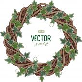 Rattan wreath entwined with ivy isolated on white vector illustration eps-10