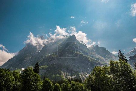 Photo pour Panoramiques Alpes suisses Wetterhorner Massif en été. Grindelwald, Suisse. Alpes bernoises - image libre de droit