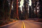 California Sierra Nevada Road