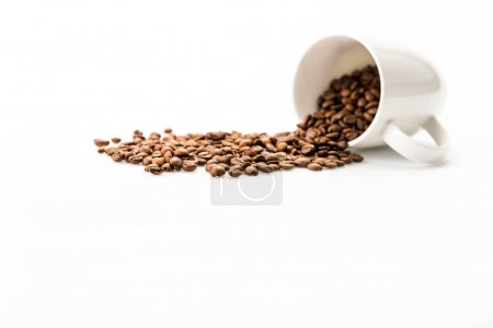 Photo for Roasted coffee beans scattered of coffee mug isolated on white - Royalty Free Image