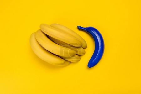 Photo for Top view of blue and yellow bananas isolated on yellow, bunch of bananas - Royalty Free Image