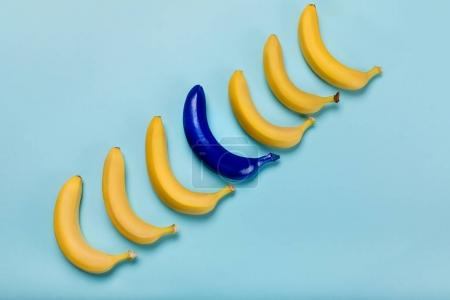 Photo for Top view of yellow and blue bananas isolated on blue, ripe bananas - Royalty Free Image