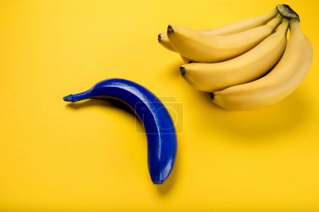 Photo for Close-up view of bunch of fresh ripe bananas and blue one isolated on yellow - Royalty Free Image
