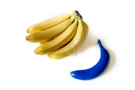 Photo for Close-up view of bunch of fresh ripe bananas and blue one isolated on white - Royalty Free Image