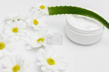 Aloe Vera plant and natural cream