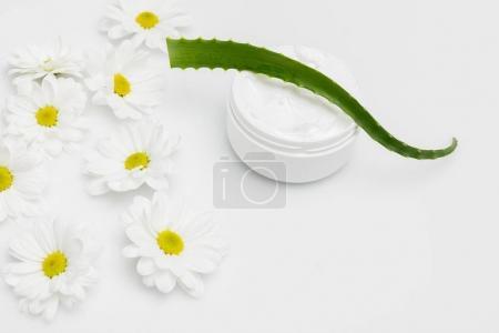 Aloe Vera plant and natural cream