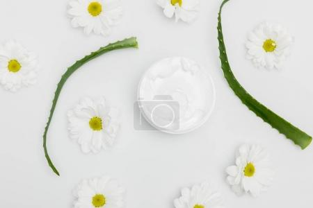 Photo for Top view of natural cream in container, aloe vera leaves and chamomiles isolated on white - Royalty Free Image