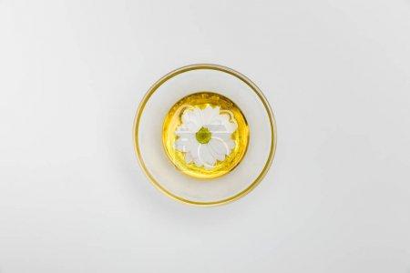 Chamomile flower in oil