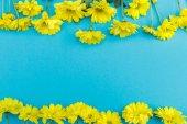 "Постер, картина, фотообои ""Красивые желтые цветы"""