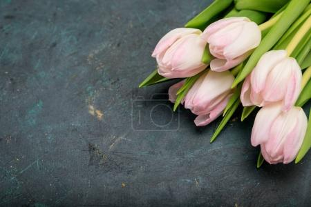 Photo for Close-up of beautiful bouquet of pink tulips with green leaves on black - Royalty Free Image