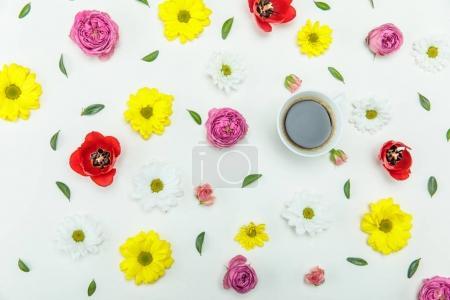 Photo pour Vue de dessus de belles fleurs diverses en fleurs avec des feuilles vertes et une tasse de café isolé sur blanc - image libre de droit