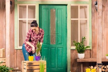 Photo pour Souriant jeune femme cultivé plante en pot tout en se tenant sur le porche - image libre de droit