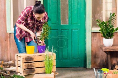 Photo pour Brunette jeune femme cultivé plante en pot tout en se tenant sur le porche - image libre de droit