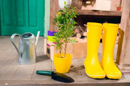 Watering can, yellow boots, plant and wooden box on porch