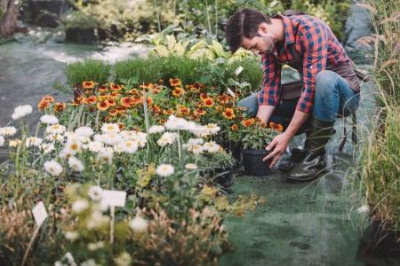 gardener working in garden