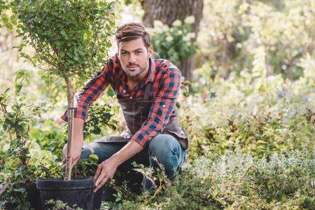 young gardener working in garden