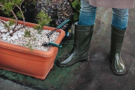 gardener in rubber boots near plants