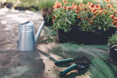 watering can, hand trowel and rake in garden